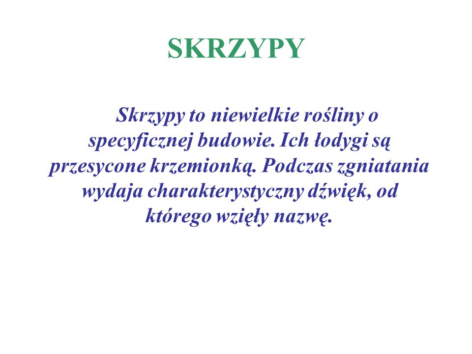 SKRZYPY