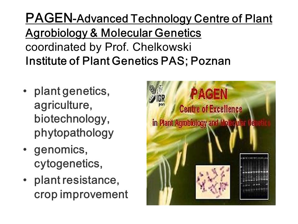 PAGEN-Advanced Technology Centre of Plant Agrobiology & Molecular Genetics coordinated by Prof. Chelkowski Institute of Plant Genetics PAS; Poznan