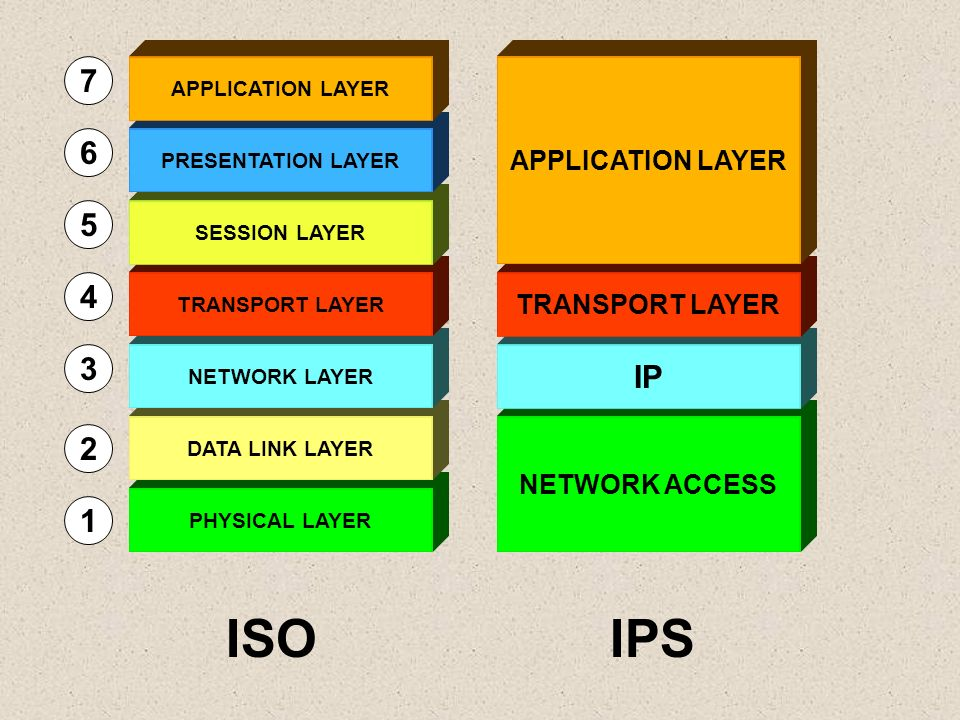 ISO IPS 7 6 5 4 3 IP 2 1 APPLICATION LAYER TRANSPORT LAYER