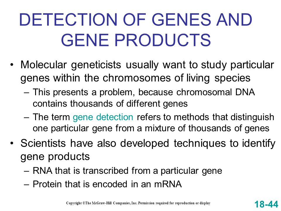 DETECTION OF GENES AND GENE PRODUCTS