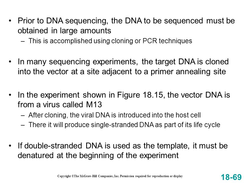 Prior to DNA sequencing, the DNA to be sequenced must be obtained in large amounts
