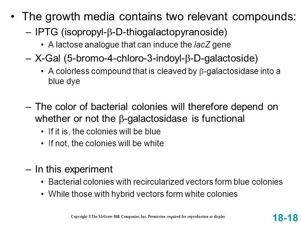 The growth media contains two relevant compounds: