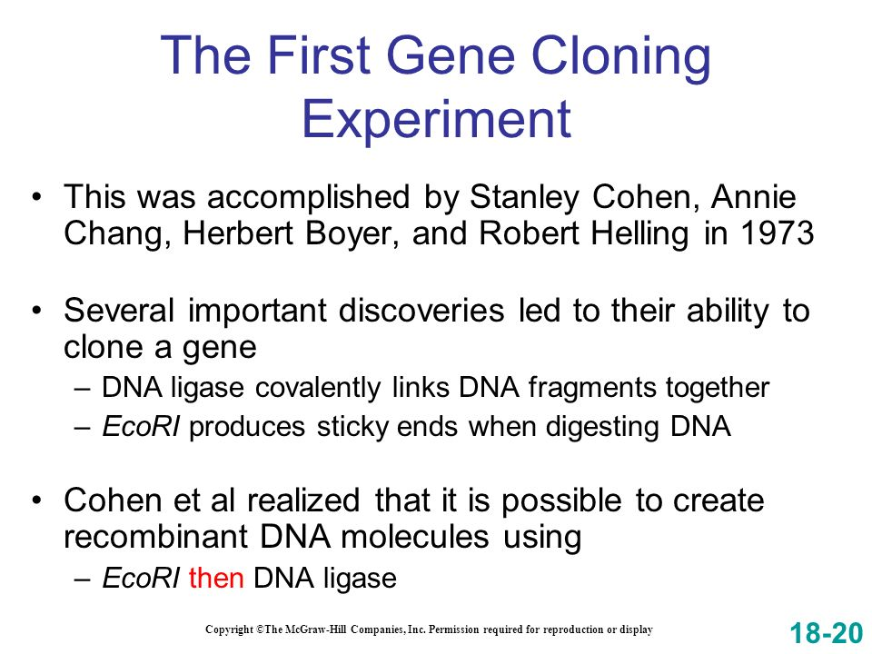 The First Gene Cloning Experiment