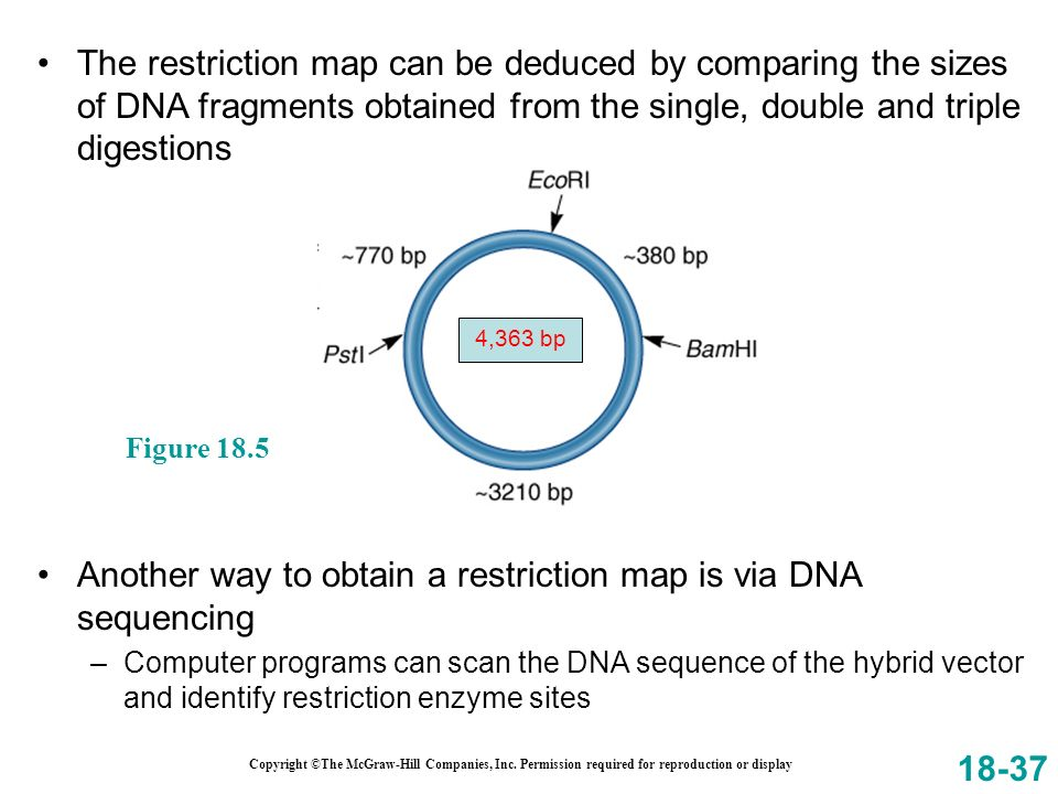 Another way to obtain a restriction map is via DNA sequencing