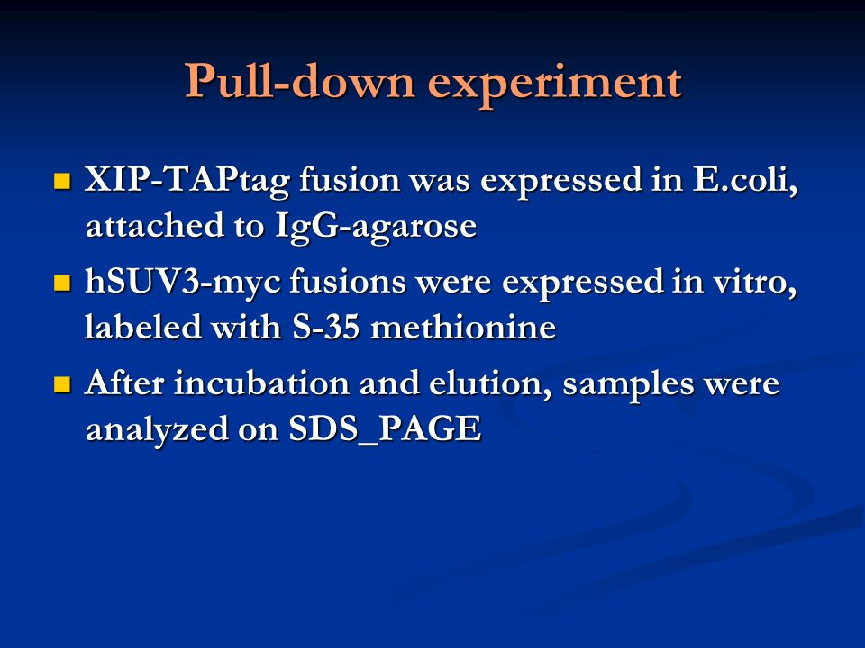 Pull-down experiment XIP-TAPtag fusion was expressed in E.coli, attached to IgG-agarose.