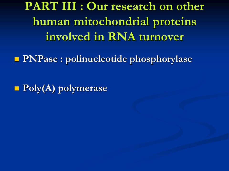PART III : Our research on other human mitochondrial proteins involved in RNA turnover