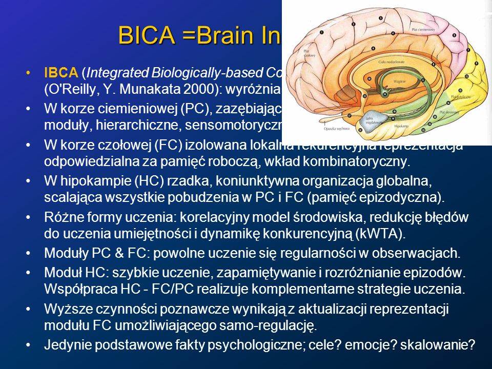 BICA =Brain Inspired CA