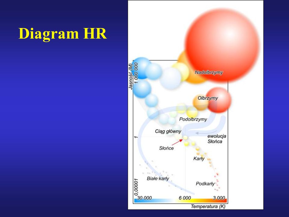Diagram HR