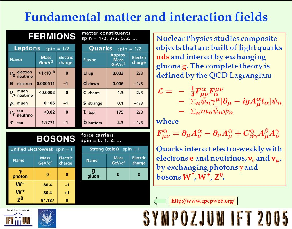Fundamental matter and interaction fields