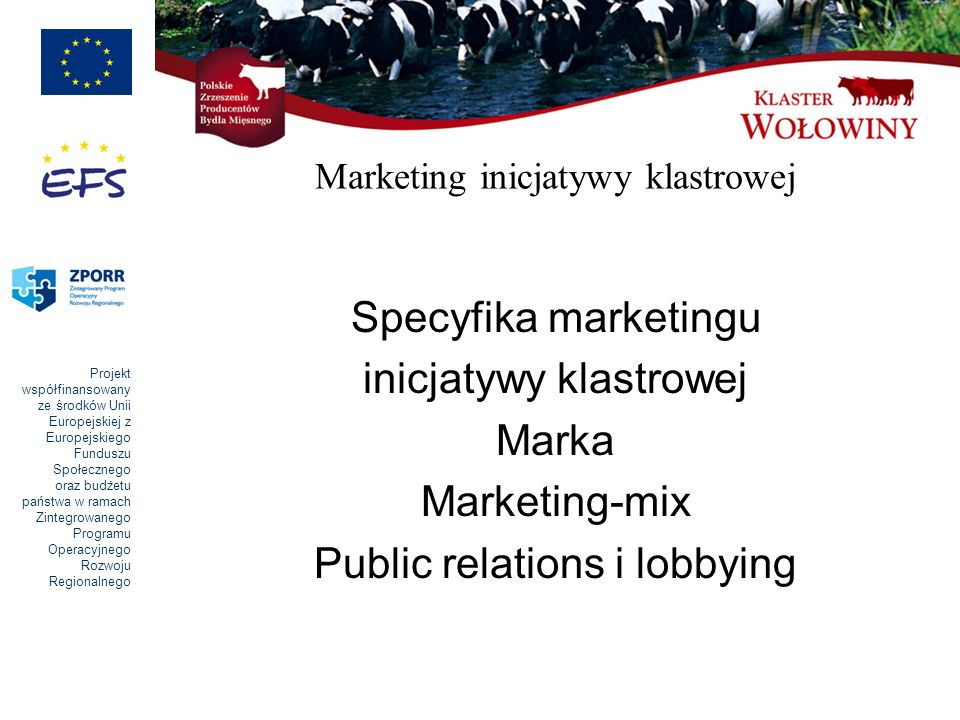 Marketing inicjatywy klastrowej