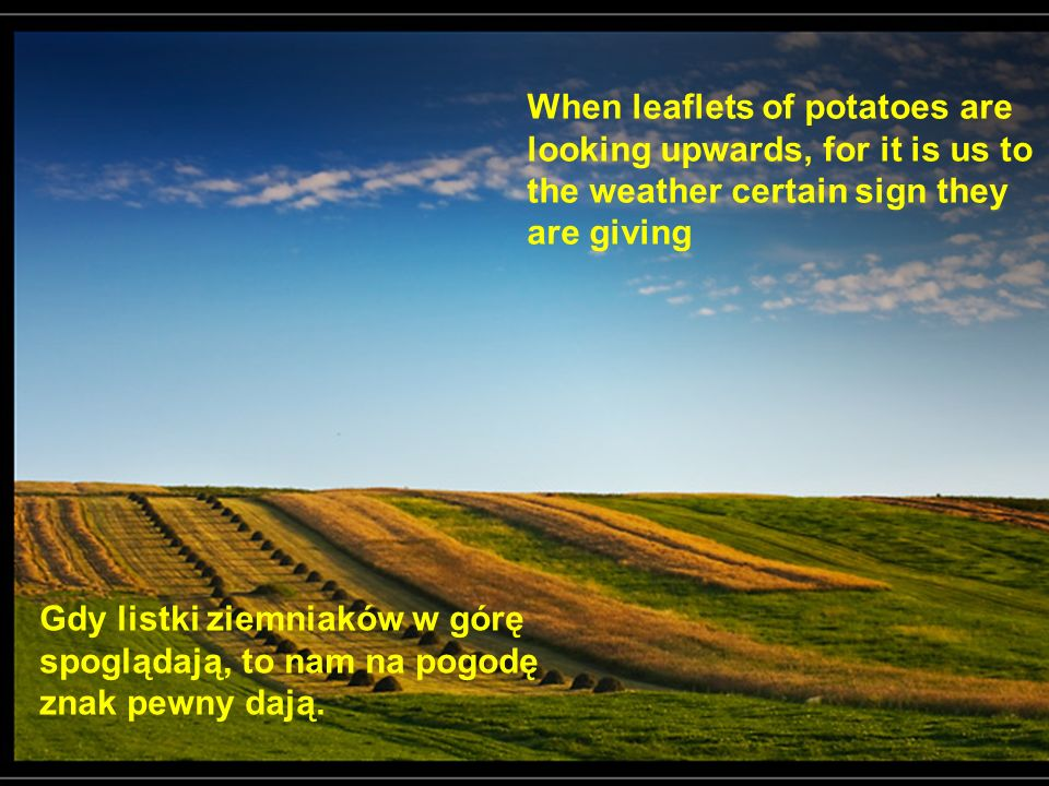 When leaflets of potatoes are looking upwards, for it is us to the weather certain sign they are giving