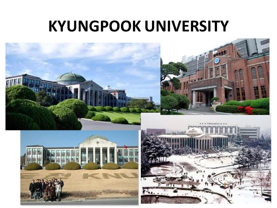 KYUNGPOOK UNIVERSITY
