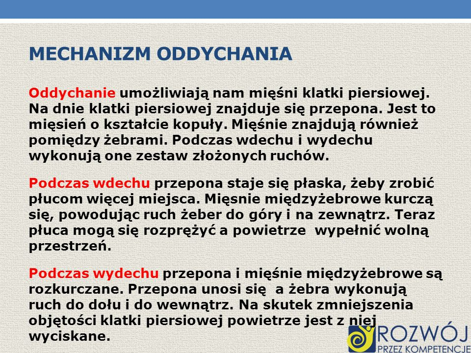 Mechanizm oddychania