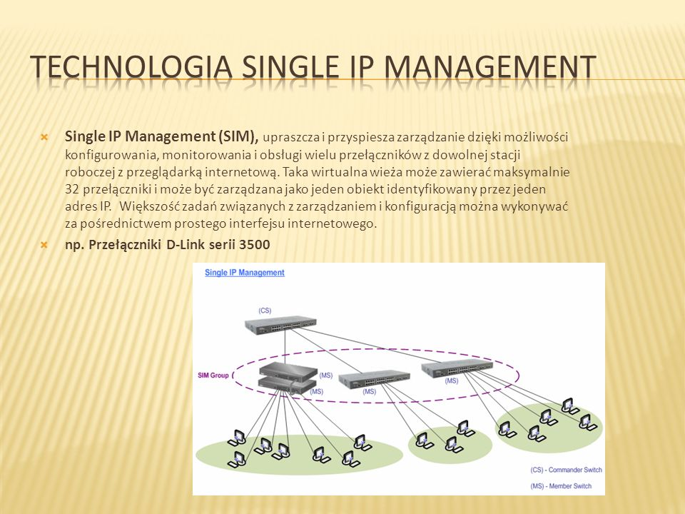Technologia Single Ip Management