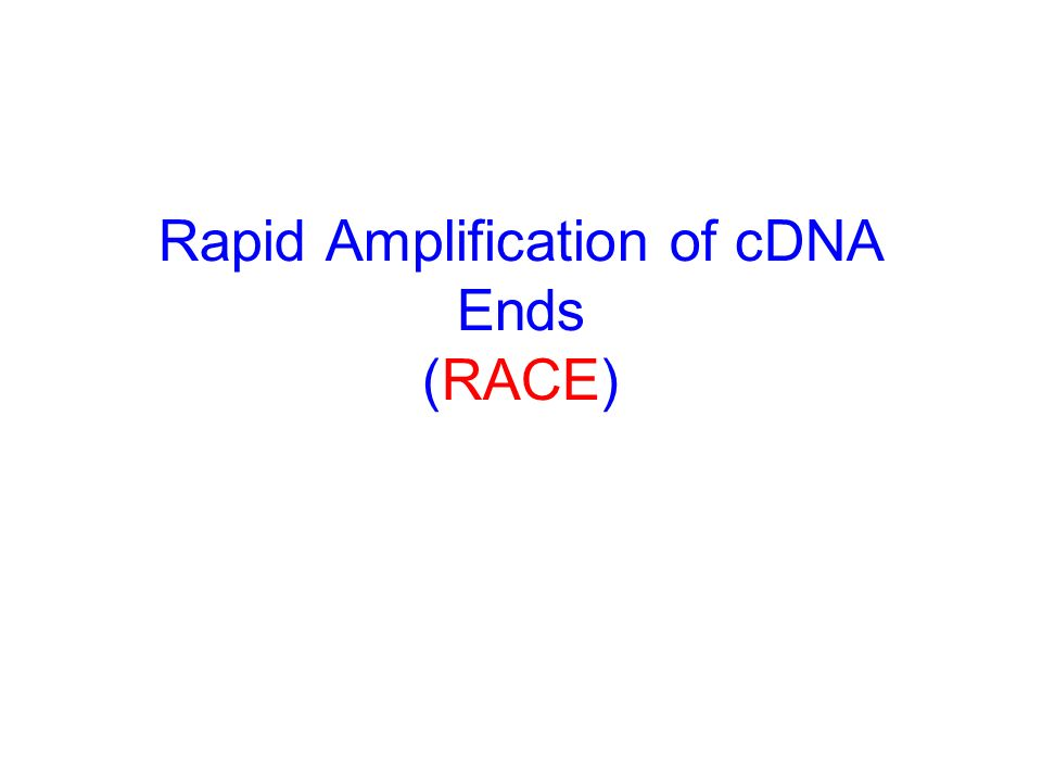 Rapid Amplification of cDNA Ends (RACE)