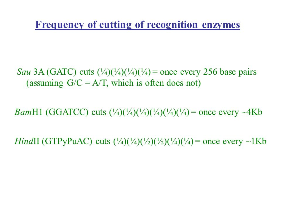 Frequency of cutting of recognition enzymes