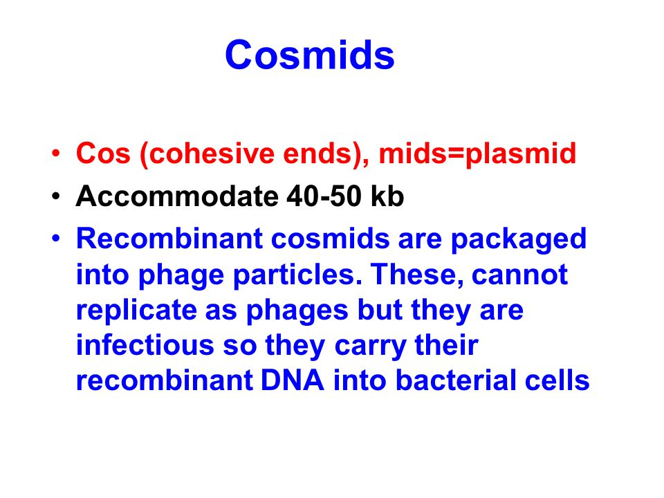 Cosmids Cos (cohesive ends), mids=plasmid Accommodate 40-50 kb