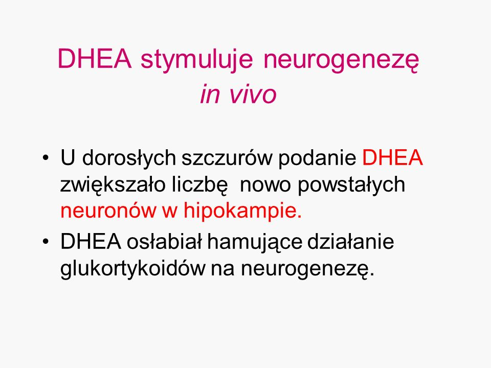 DHEA stymuluje neurogenezę in vivo
