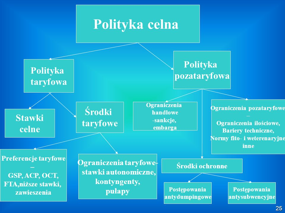 Polish Customs Service