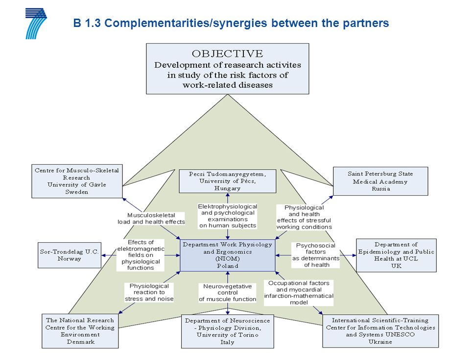 B 1.3 Complementarities/synergies between the partners