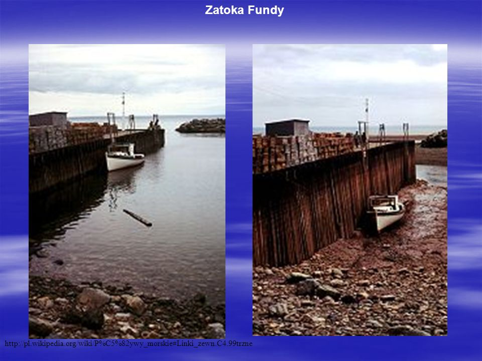 Zatoka Fundy