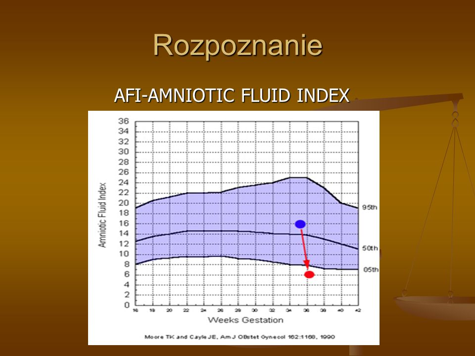 AFI-AMNIOTIC FLUID INDEX