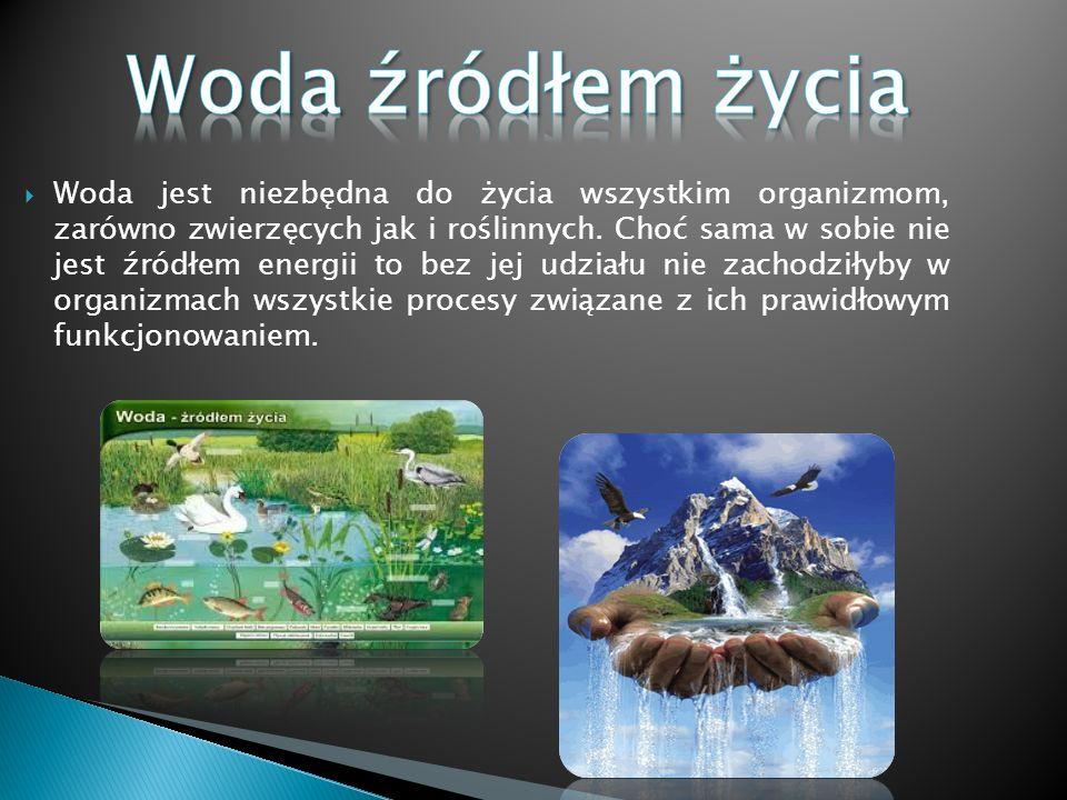Woda źródłem życia i energii - ppt pobierz