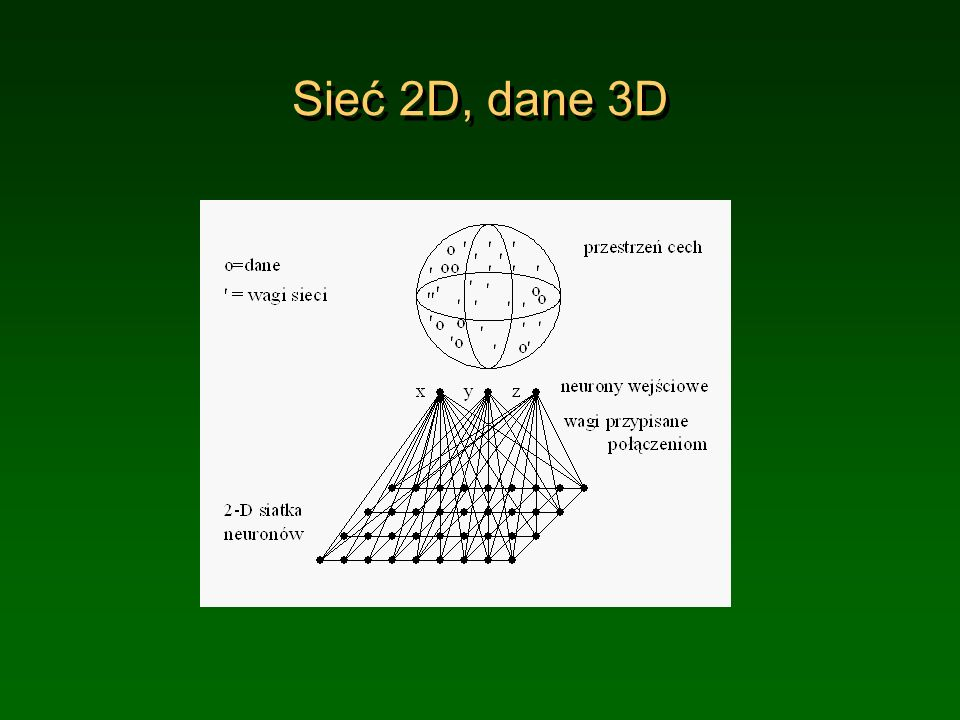Sieć 2D, dane 3D (c) 1999. Tralvex Yeap. All Rights Reserved