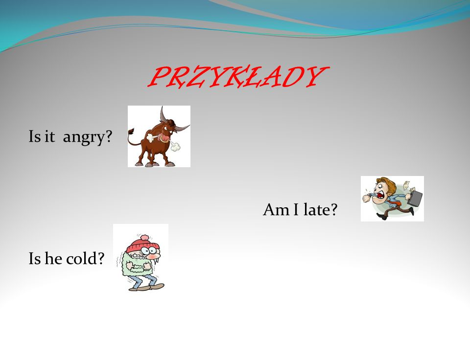 PRZYKŁADY Is it angry Am I late Is he cold