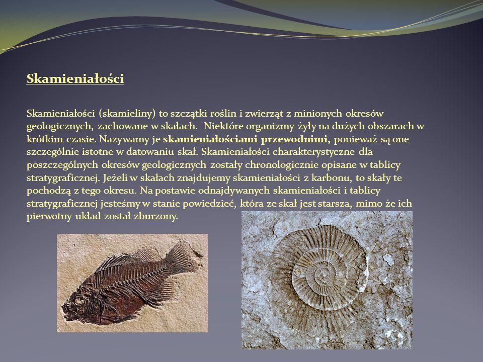 Datowanie skamielin rozpadem promieniotwórczym
