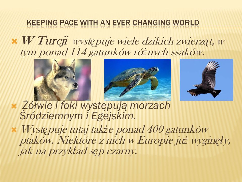 Keeping pace with an ever changing world