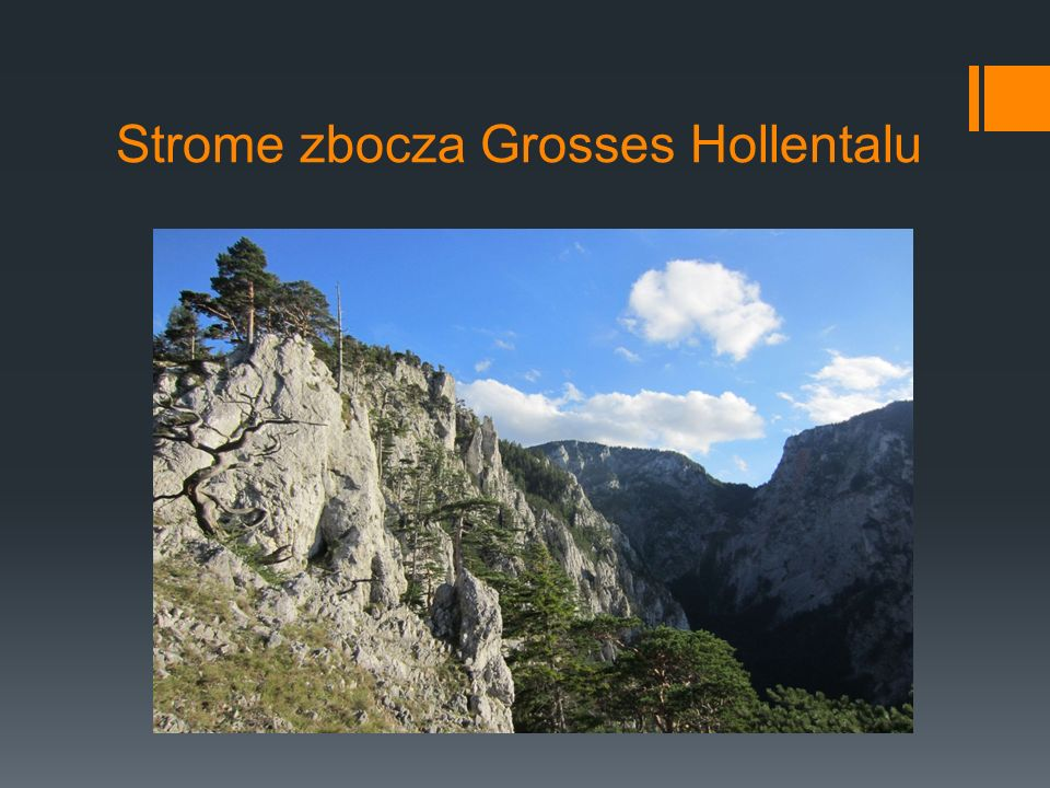Strome zbocza Grosses Hollentalu