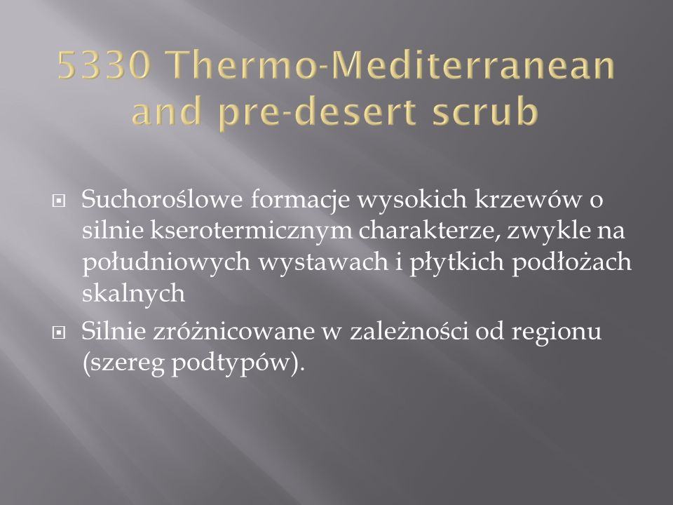 5330 Thermo-Mediterranean and pre-desert scrub