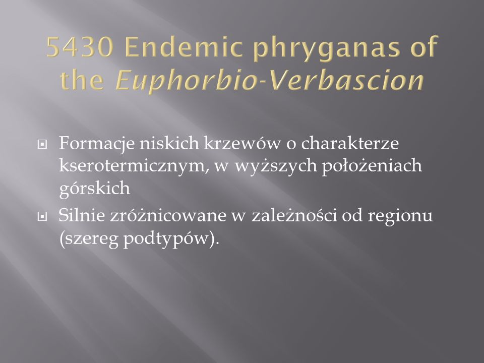 5430 Endemic phryganas of the Euphorbio-Verbascion