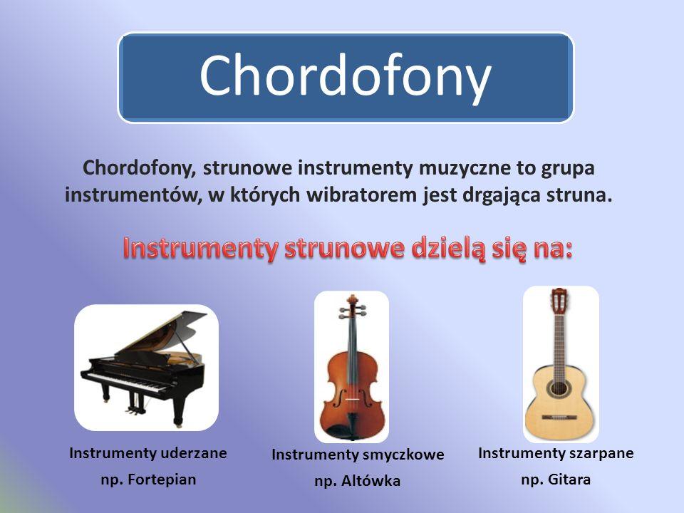 Zaawansowane Instrumenty Muzyczne Natalia Rudnicka Kl. IA. - ppt video online NT15