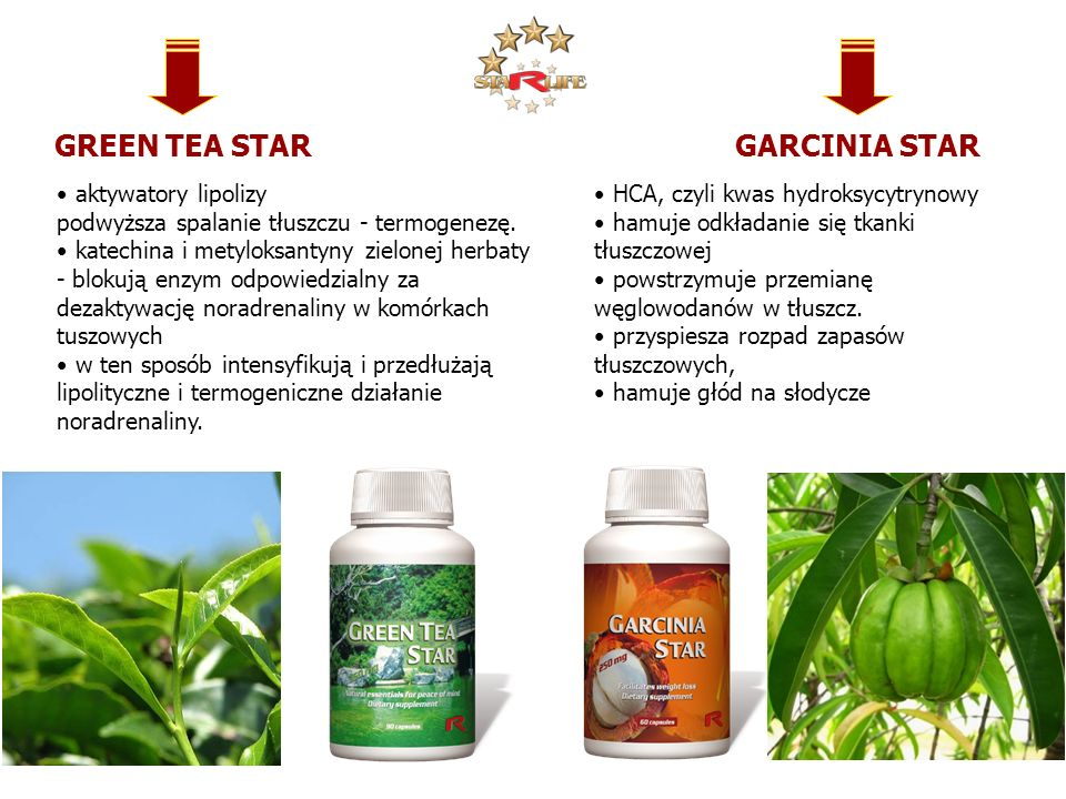 GREEN TEA STAR GARCINIA STAR